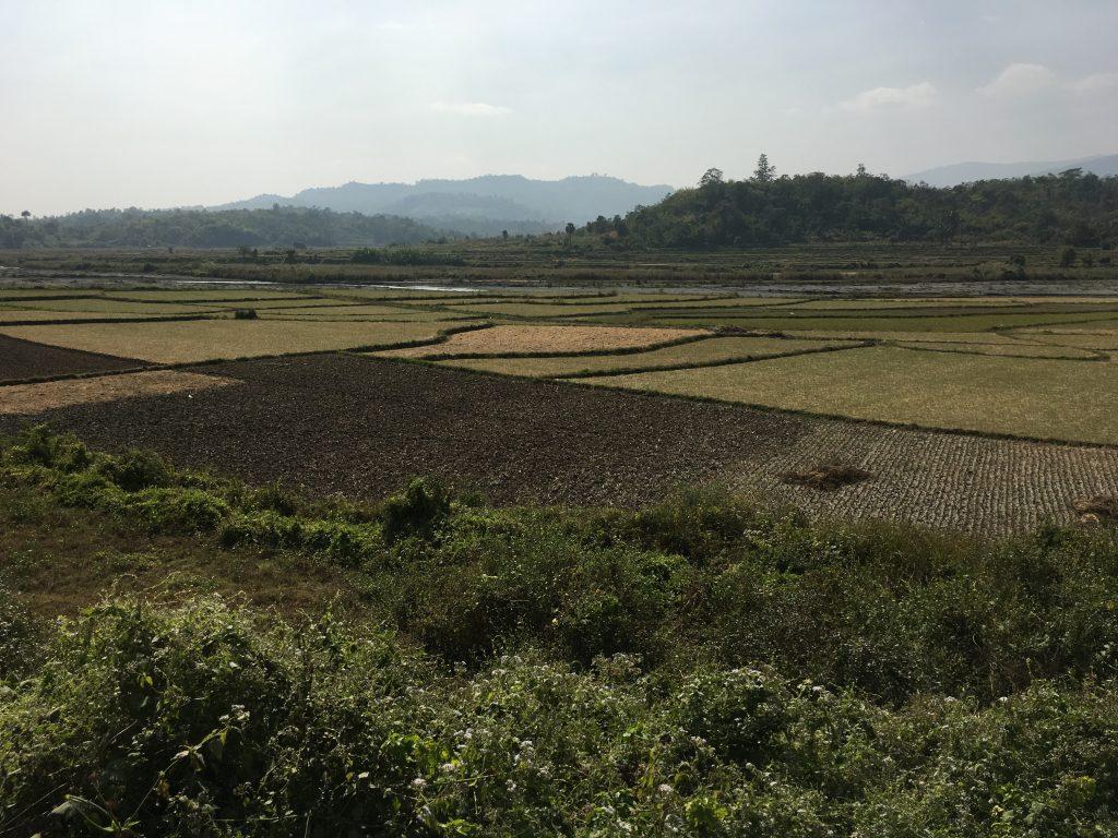 KT Field